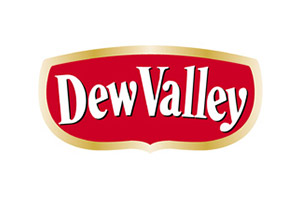 Dew Valley